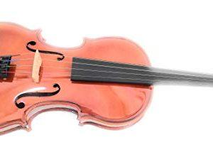 Hofner AS045 COMPLETE Alfred Stingl Violin, Br
